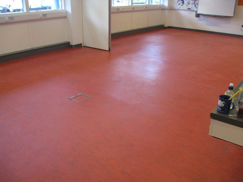 Linoleum floors home design ideas for Colourful lino flooring